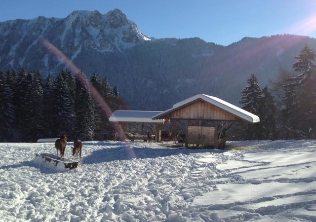 Notre Top 10 des stations de ski kids friendly
