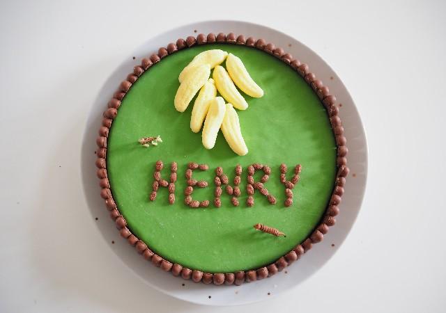 Tuto gâteau d'anniversaire Jungle