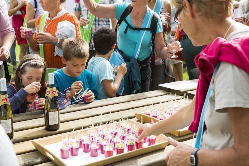 vins-vignes-activites-kids