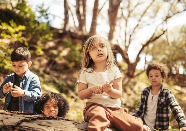 Ecole dans la forêt pour enfants